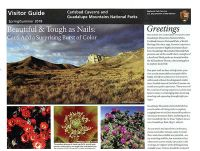 Carlsbad Caverns and Guadalupe Mountains National Parks Visitor Guide, Spring/Summer 2018