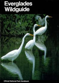 Everglades Wildguide: The Natural History of Everglades National Park, Florida