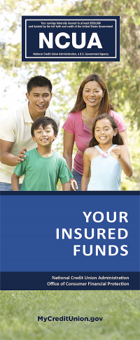 Your Insured Funds Brochure (English)