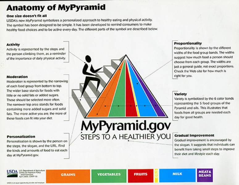 Anatomy of MyPyramid (Paper Sheet)