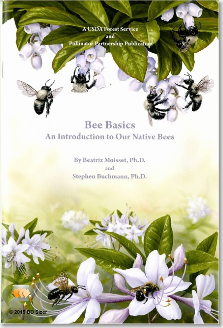 Bee Basics: An Introduction to Our Native Bees (Pamphlet)