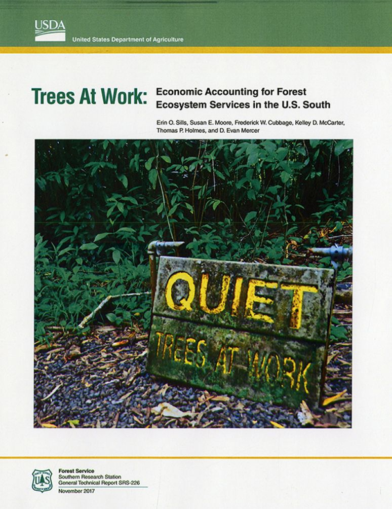 Trees at Work: Economic Accounting for Forest Ecosystem Services in the U.S. South