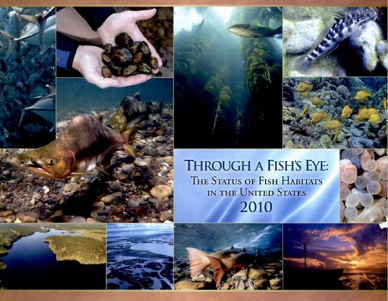 Through a Fish's Eye: The Status of Fish Habitats in the United States 2010