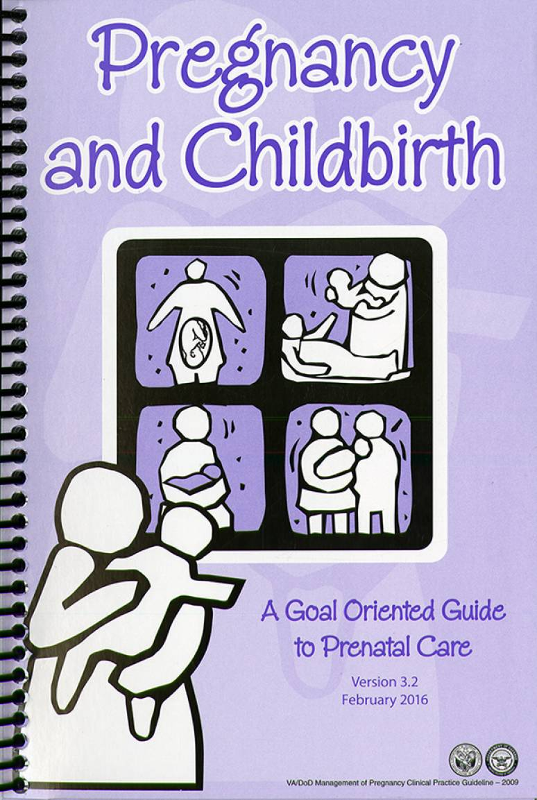 Pregnancy and Childbirth: A Goal Oriented Guide to Prenatal Care