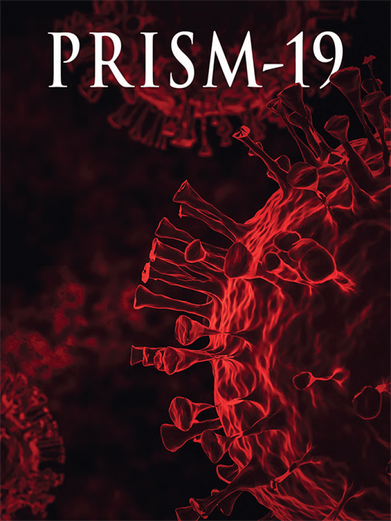 Prism: A Journal of the Center for Complex Operations