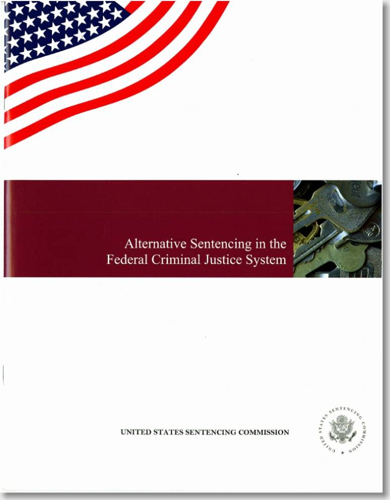 Alternative Sentencing in the Federal Criminal Justice System