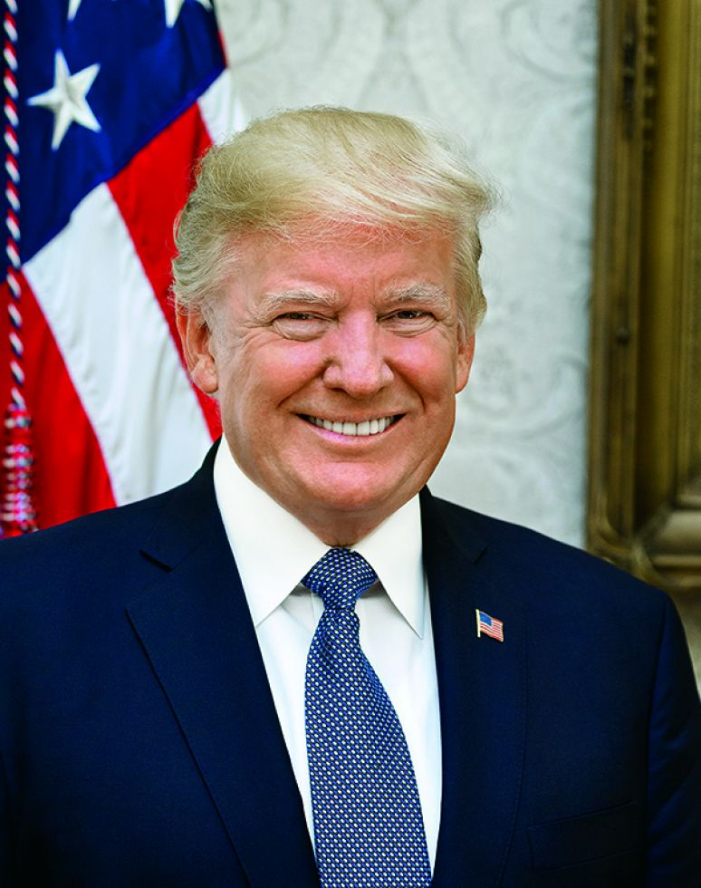 Official Presidential Portrait of Donald Trump (8x10)